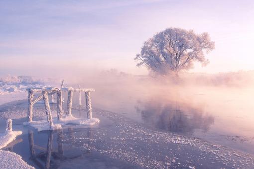 Foggy winter sunrise